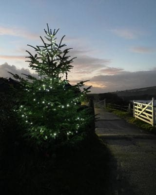 It's beginning to look a lot like Christmas! 🎶🎄  #Bantham #BanthamDevon #Christmas #Holidays #Winter  #Countryside